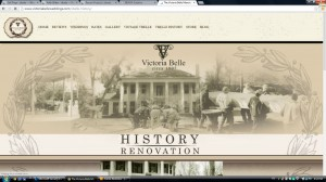 Vbelle_page-history